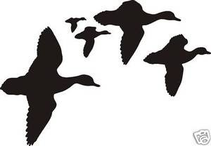 HUGE FLOCK OF DUCKS Scene duck Decal wall or car window