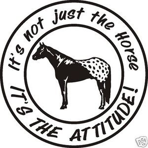 LRG APPALOOSA ATTITUDE HORSE DECAL trailer spurs rope