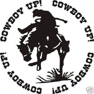 COWBOY UP BRONC RIDER WEWSTERN DECAL STICKER SADDLE ROPE SPURS