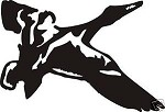 DUCK in flight MALLARD decal hunt call blind decoy