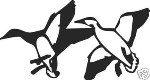 PAIR OF DUCKS LANDING decal hunt call blind decoy