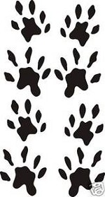 Set of eight OTTER TRACKS decal design