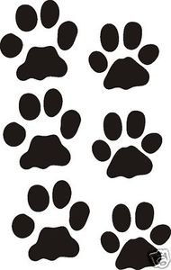 Set of six BOBCAT TRACKS decal design