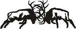 Large 2' Fighting Bull Elk 6 point antler decal bow arrow blind deer hunt