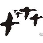 FLOCK OF DUCKS Scene duck Decal for wall or car window