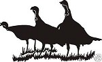 THREE TURKEY Scene Decal for wall or car window