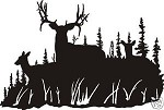MULE DEER BUCK FAMILY Window car wall window Decal