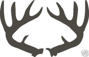 Large WHITETAIL antlers Window car wall window Decal