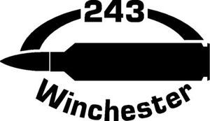243 Win gun Rifle Ammunition Bullet exterior oval decal sticker car or wall