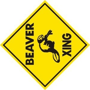 BEAVER XING CROSSING Aluminum Saftey Sign for trap or hunt