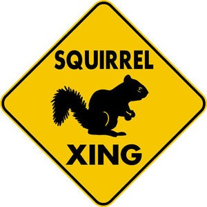 "SQIRREL XING CROSSING 16.5"" EXT Aluminum Sign rustic farm ranch cabin decor"