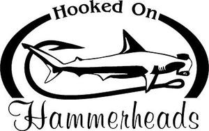 HOOKED ON HAMMERHEADS Salt water fish fishing trip lure Car Wall Decal /Sticker