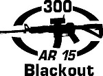 300 BLACKOUT AR 15 gun Rifle Ammunition Bullet exterior oval decal sticker car