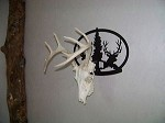 MULE DEER OVAL laser cut steel European wall mount pwdr coated trophy bow hunt